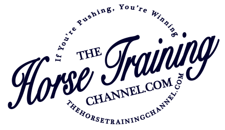TheHorseTrainingChannel